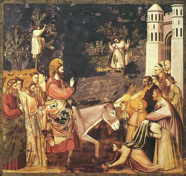 28 Giotto - L'ingresso a Gerusalemme - assieme