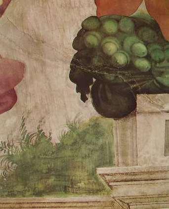 Michelangelo - Volta della Cappella Sistina, particolare di un Ignudo, con cornucopia