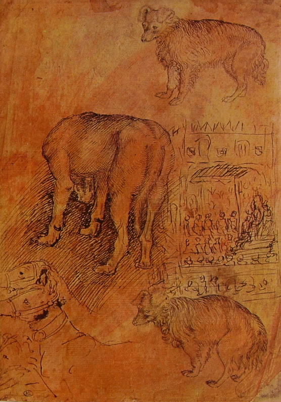 Pisanello: Studio di cani ed episodio aulico
