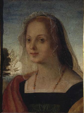 Rosso Fiorentino: Ritratto di giovinetta