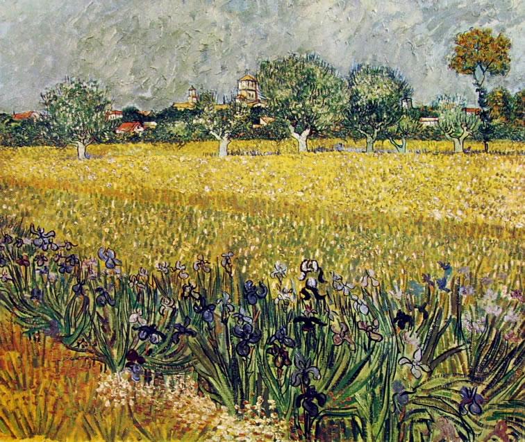 Campo con iris e veduta di Arles