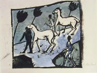 Cavalli bianchi