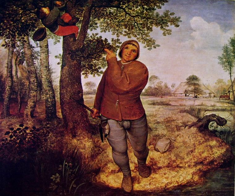 Pieter Bruegel: Il ladro di nidi