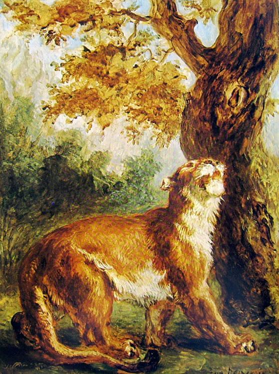 Eugène Delacroix: Puma (Louvre Parigi)