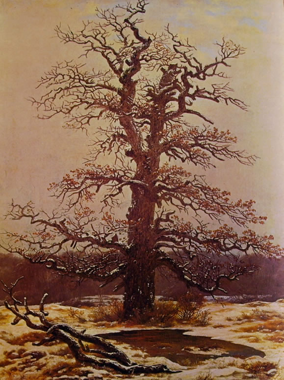 Caspar David Friedrich: Quercia nella neve