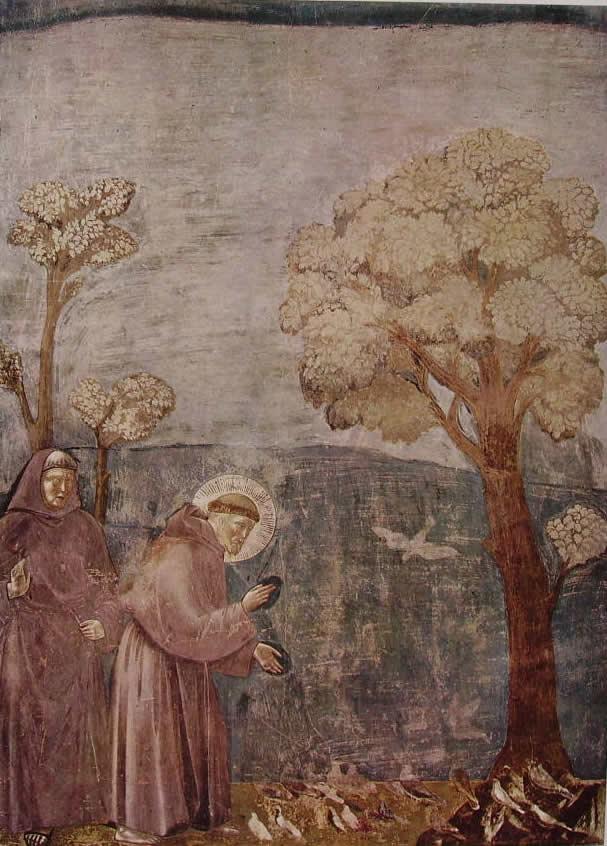 Giotto: La predica agli uccelli (Assisi)