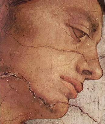 Michelangelo Buonarroti:Particolare del volto di un Ignudo - Cappella Sistina