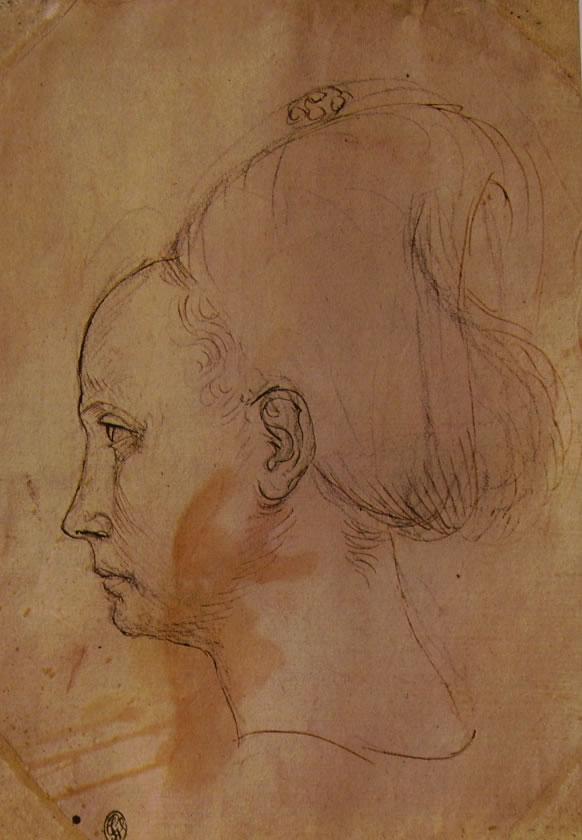 Pisanello: Testa di donna in profilo verso sinistra