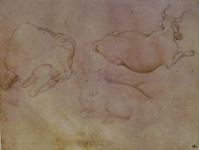 Pisanello: Tre mucche sdraiate