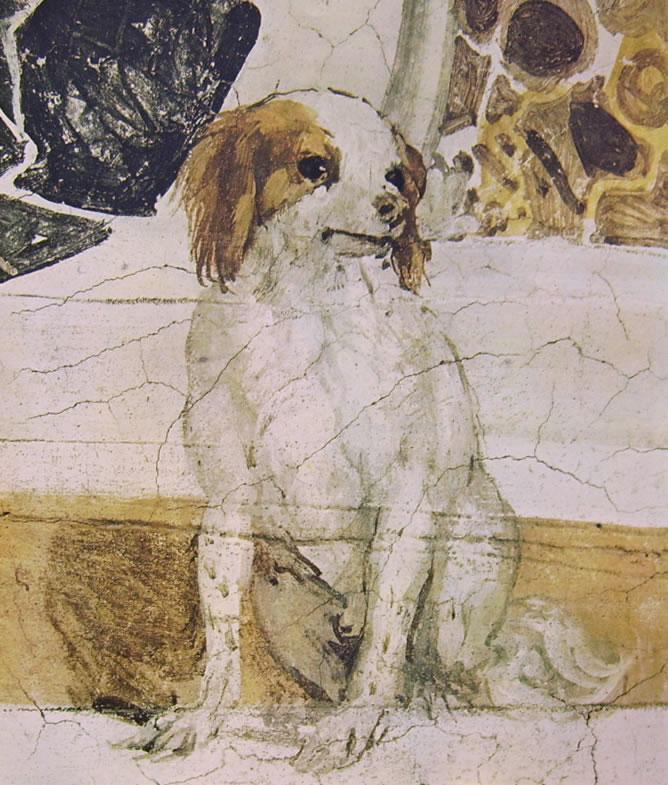 """Il Veronese: Affreschi di Maser - """"Stanza del cane"""""""