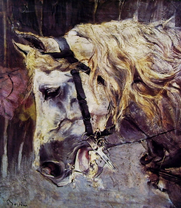 Giovanni Boldini: Testa di cavallo bianco (Collezione Rizzoli)