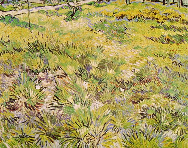 Vincent van Gogh:Farfalle su un prato