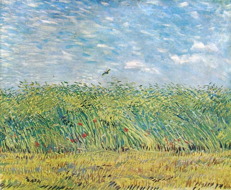 Vincent van Gogh:Limitare di un campo di grano