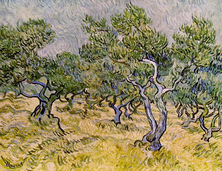 Vincent van Gogh:Oliveto con cielo azzurro