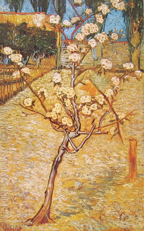 Vincent van Gogh:Pero in fiore