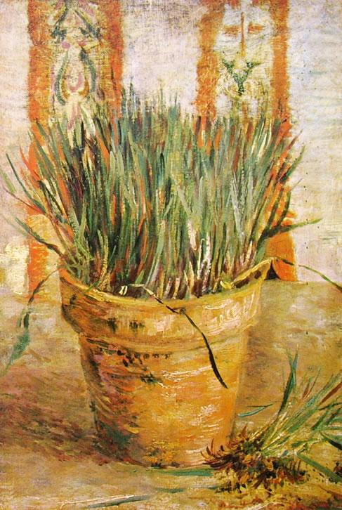 Vincent van Gogh:Pianta d'aglio