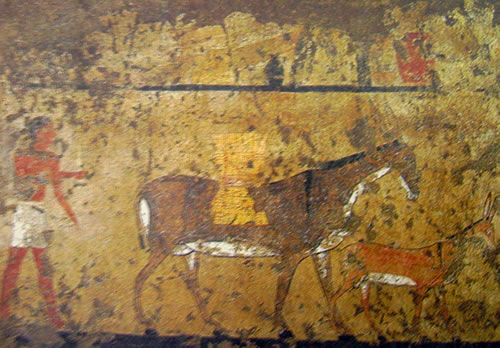 Tomba di Iti a Gebeleyn, Trasporto del grano su di un asino, Primo periodo intermedio, Museo Egizio di Torino